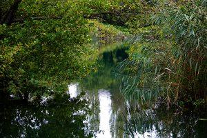 Nationalpark Krka, Krotien
