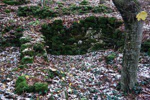 Föhrenwald Bad Fischau - Ruinen
